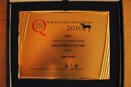 Year End High Point Horse 2010, reiten, Reining, Sinsheim
